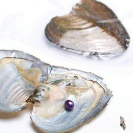 Wholesale Freshwater Shells - Jewelry Materials Gifts Zhuji Freshwater Oyster Shells With Dark Purple AAA Grade 7-8 mm Rice Pearl