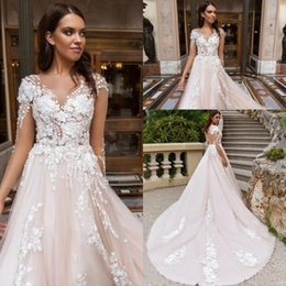 Wholesale Look Sexy - Romantic Blush Backless Wedding Dresses Sheer Illusion Look 2018 Vestidos 3D Flora Appliqued Long Train Bridal Gowns