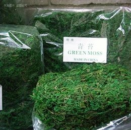 Mantenere asciutto Real Green Moss Decorative Plants Vaso Artificiale Fiori di seta per accessori Flowerpot Flowerpot 50 g / borsa cheap artificial green moss da muschio verde artificiale fornitori