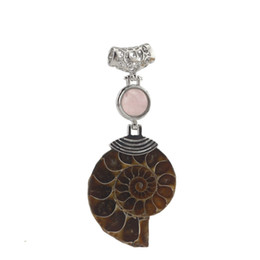 Wholesale Silver Ammonite - Attractive Natural Ammonite Conch Shell Mix-Crystal Stone Pendant Bead