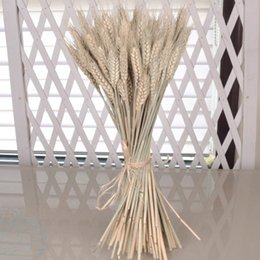 Wholesale dried flower vases - 50 Pieces Dried Flower Ear Of Wheat Decor Wedding Decorations Artificial Flower Silk Vase Plants Camera Wheat Christmas T3
