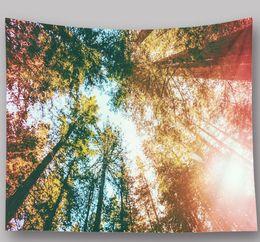 Malerei esszimmer online-2.29m * 1.5m natürliche Landschaft Sternenhimmel Foto Wandbehang Esszimmer dekorative Malerei Home Kunst Wandbehang Strandtuch