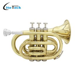 Wholesale Bb Professionals - wholesale LADE Professional Pocket Trumpet Tone Flat B Bb Brass Wind Instrument with Mouthpiece Gloves Cloth Brush Grease Hard Case