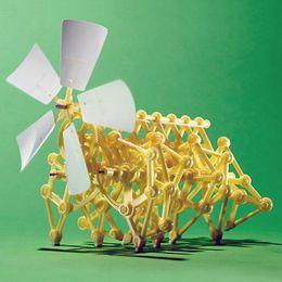 Canada Vente chaude bricolage robot actionné par le vent Walker Mini Strandbeest Assemblée modèle Robot Enfants Enfants Jouet cheap assembly toys Offre