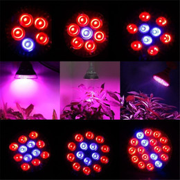Wholesale E27 36w Grow - Full Spectrum LED Grow Lights 21W 27W 36W 45W 54W E27 PAR 38 30 Bulb For Flower Plant Hydroponics System Grow Box
