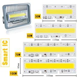 Wholesale Smd Flood - LED COB Bulb Lamp Light 30W 50W 70W 100W 150W 220V Input IP65 Smart IC Fit For DIY LED Flood Light Cold White Warm White