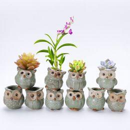 Wholesale Glazed Planters Wholesale - Cartoon Owl-shaped Flower Pot for Succulents Fleshy Plants Planter Ceramic Mini Small Home Garden Decoration ZA4149