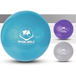 Wholesale Purple Yoga Balls - Winmax Fashion Hot Style 75cm Exercise Workout Fitness PVC Gym Yoga Ball Anti Burst Swiss Core Ball 3 Colors Purple Blue Grey