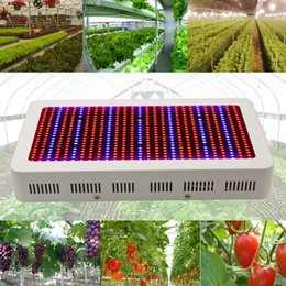 Wholesale Grow Kits - Stock In US + Full Spectrum Grow Light Kits 600W Led Grow Lights Flowering Plant and Hydroponics System Led Plant Lamps AC 85-265V