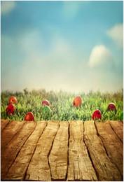 Argentina Feliz día de Pascua Fotografía Fondo de madera Suelo Azul Cielo Verde Pastizales Colorido Huevos Niños Niños Foto Estudio de fondo cheap easter egg photos Suministro
