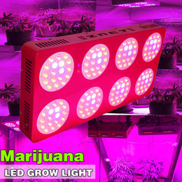 Wholesale Garden Greenhouses - Winleaf 1000W LED Grow Light Double Chips Full Spectrum LED Lamp for Indoor Garden Growing Plants Aquarium Greenhouse Hydroponic