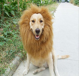 Wholesale Lion Head Hat - Funny Cute Pet Costume Cosplay Lion Mane Cap Hat doggy lion hat High Quality Cat toy Stuffed Plush Lion head circumference Hat G850