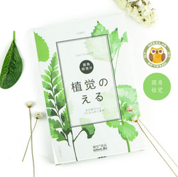 Wholesale Wholesale Green Greeting Cards - Wholesale-30 pcs pack Creative Green Plants Greeting Card Postcard Birthday Gift Card Set Message Card Letter Envelope Gift Card