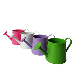 Wholesale Egg Easter Box - Wholesale Metal Favor Pai l Flower Sprinkler Mini Small Watering can bucket flower metal easter egg box favor holder mixed colors