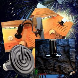 Canada Vente en gros - 200W 220V Céramique infrarouge Reptile Chaleur Émetteur Chauffage Lampe Ampoule Lumière pour Serpent Lézard Brooder Pet Coop Noir cheap infrared heater wholesale Offre