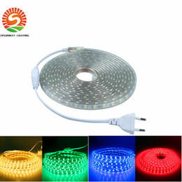 Wholesale Meters Outdoor Lights - Waterproof SMD5050 led tape AC220V flexible led strip 60 leds Meter outdoor garden lighting with plug