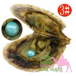 Wholesale Circle Pearls - High quality cheap love Akoya shell pearl oyster 6-7mm red gray light blue pearl oyster with vacuum packaging