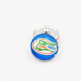 Wholesale Wholesale Mascot Charms - 8 Styles NCAA Ginger Snap Jewelry Florida Mascot Snap Button 18mm Glass Collegiate Sport Team Snap Charms Fit For DIY Jewelry