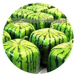 Wholesale Great Fruits - 300pcs a set Square Shape Watermelon Fruit Citrullus lanatus Seed Hot Seed Rare Seed Great Quality Great Service Great Price