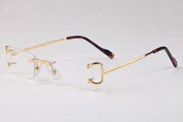 lunettes homme optique sans contour Promotion monture de lunettes de soleil optiques sans monture pour femmes en corne de buffle lunettes de soleil lunettes de soleil lunettes de vue lunettes
