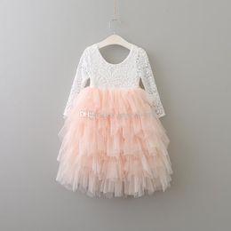 Wholesale Autumn Cake - 2017 baby princess dress girls lace TuTu dress cotton long sleeves cake dresses Kids Clothing C2964