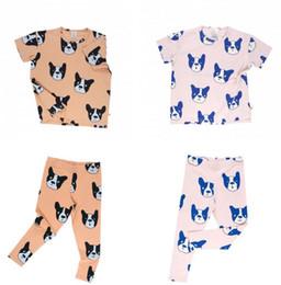 Wholesale Dog Girls Pants - INS boys girls fashion suit summer cotton printed dog children's short-sleeved t-shirt+render pants 2 Pcs Set Kids Boutique Clothing B4703