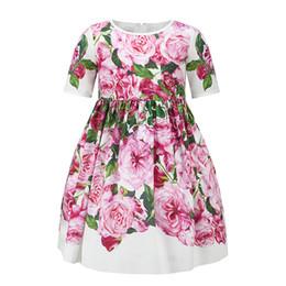 Wholesale Baby Girl Designer Clothes - 2017 New Summer Baby Girls Floral Printed Dress European Style Designer Children Rose Dresses Kids Clothes