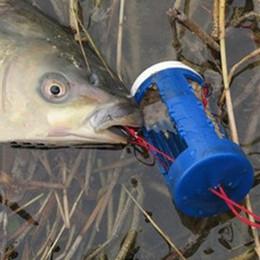 Wholesale Wholesale Saltwater Fishing Supplies - q0205 Anmuka 1 pcs New Fishing Hook Sets Outdoor Fish Hook Fishing Supplies Fishing Tackle Explosion Hooks For Carp