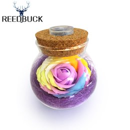 Wholesale Roses Light Bulbs - Wholesale- LED RGB Dimmer Lamp Creative Romantic Bulb Rose Flower Bottle Light Great Gift For Mom Lady Girls With 16 Colors Remote Control