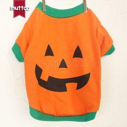 Оранжевая футболка онлайн-Оптовая одежда для собак, хлопок, оранжевый и желтый Рождество Хэллоуин тыква pet stout футболки весна и осень GYF-005