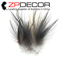 Wholesale Plumage Feathers - ZPDECOR FEATHERS 50pcs lot 4-6inch (10-15cm)Selected Prime Quality Natural Grey Heron Plumage feathers For Millinery