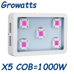 Wholesale Indoor Hydroponic Growing Systems - 2017 latest COB led grow light 1000w full spectrum Plant grow lamp Hydroponic Indoor Growing System