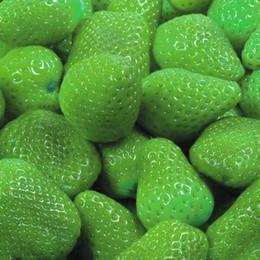 plantando semillas de fresa Rebajas Semillas 50 PCS Fresa Fruta Verde Semillas de fresa Plantas de Bonsai Semillas Especies raras de frutas y verduras