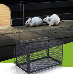 Wholesale Control Rats - Wholesale-Rat Cage Mice Rodent Animal Control Catch Bait Hamster Mouse Trap Humane Live high quality brand new free shipping