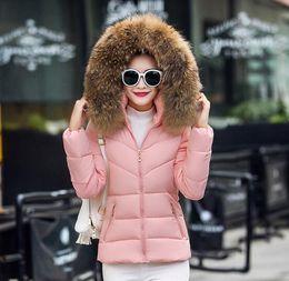 Wholesale Fake Fur Clothing - 2016 Women Winter Jacket Fake Fur Collar Parka Thick Snow Wear Coat Lady Clothing Female Jackets Girls Parkas Free Shipping
