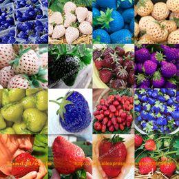 2019 перцовый перец 16 пакетов, 50 семян / пакет=800 семян, 16 типов семян клубники плода, органические гигантские ягоды бонсай клубники Non-GMO-Чудо земли