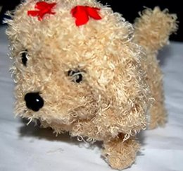 Wholesale Cat Poodle - Teddy dog animal suffed doll poodle plush toys cute plush toy puppy birthday gift Kids Toys birthday present Party Decoration