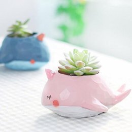 Wholesale Bonsai Cartoon - Creative Whale Cute Cartoon Resin Flower Pots Elephant Animals Succulent Plant Pots Bonsai Planter Home Decoration ZA3060