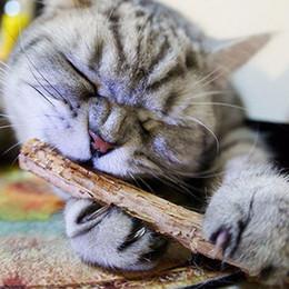 Продукт игрушка дерево онлайн-DHL бесплатная кошка игрушки домашних животных котенок Silvervine зубы палочки игрушки для кошек здоровье зубов продукты палочки игрушки для животных котенок продукции лесной кот пользу закуски