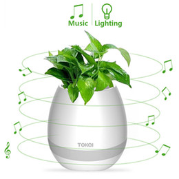 Wholesale Flower Port - TOKQI bluetooth Smart Music Flower-ports intelligent real plant touch play flowerpot colorful light long time play bass speaker