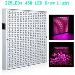 2019 panel led creciente LED Grow Light 225 LEDs SMD2835 Panel Lamp para Hydroponics Flower Vegetable Plant con espectro completo Led Grow Light rebajas panel led creciente
