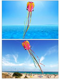 Wholesale Nylon Kites Wholesale - free shipping high quality large octopus kite with handle line children kites wholesale eagle kite surfing hcxkite factory