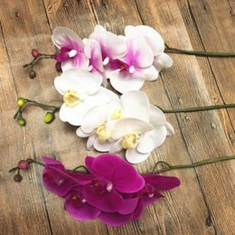 Wholesale Real Touch Calla - Wholesale-5 flower 74cm artificial Phalaenopsis flower source material real touch soft high quality orchid purple color white color