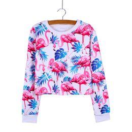 Wholesale Ladies Short Sleeve Sweatshirts - Fashion Flamingo print casual girls crop sweatshirt lady Autumn clothes long sleeve fashion women pullover mix order factotry wholesale