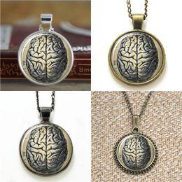 Orecchini medici online-10pcs Brain Human Anatomy Medical Science Phrenology Collana portachiavi segnalibro gemello braccialetto orecchino