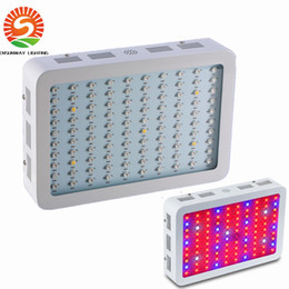 Wholesale 1000w led grow light Recommeded High Cost effective Double Chips full spectrum led grow lights for Hydroponic Systems