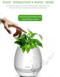 Wholesale Metal Flower Stands Wholesale - Bluetooth speakers Smart Music Flower pots intelligent real plant touch play flowerpot colorful light bass speaker Night light