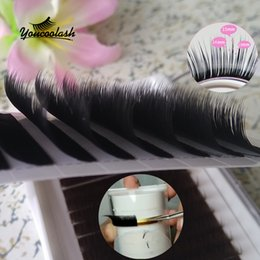 Wholesale Eyelash Extension D Curl - Camellia Eyelash Extension 0.07 Super Soft Volume lashes Mixed Length in One Line B C D Curl 3D-6D New Store 50% off