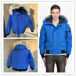 Wholesale Thin Men Size Jackets - 2016 New Men's Goose down jacket Coat Fur Goose Men Chilliwack Parka fur jacket and the size of the coat cotton male hooded casual
