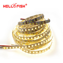 Wholesale White Smd Led Number - Wholesale-Hello Fish 5M 2835 600 SMD LED Strip 12V flexible120 led m LED Tape, White Warm white  Red  Green  Blue With Tracking Number